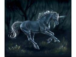 Единороги, пегасы, лошади в стиле фэнтези картинки