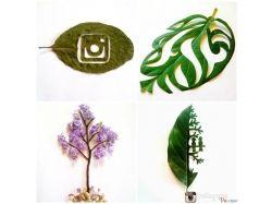 Как делать креативные фото