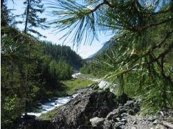 Гора белуха фото летом