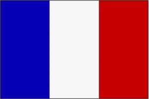 Чей флаг красный синий белый