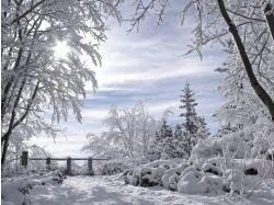 Анимации картинки зима бесплатно на рабочий стол