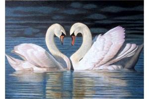 Картинки лебеди