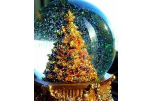 Фото на рождество