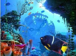 Док фильм подводный мир