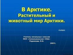 Немиро л.в. презентация подводный мир черного моря