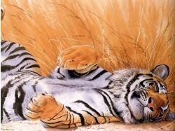 Рисованые тигры картинки