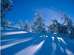 Обои картинки фото зима