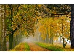 Осень фото пейзаж россия