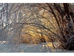 Фото зима абхазия