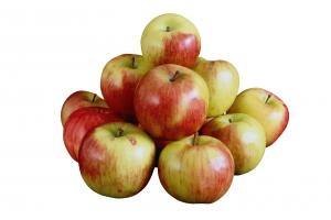 яблоки картинки