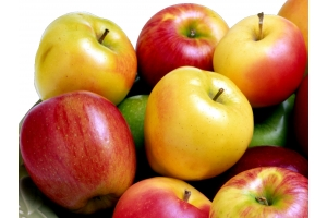 Картинки яблоки