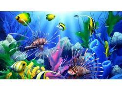 Обои для рабочего стола анимация подводный мир
