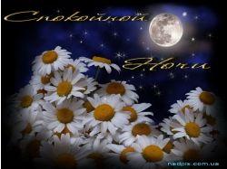 Спокойной ночи любовь картинки бесплатно 6
