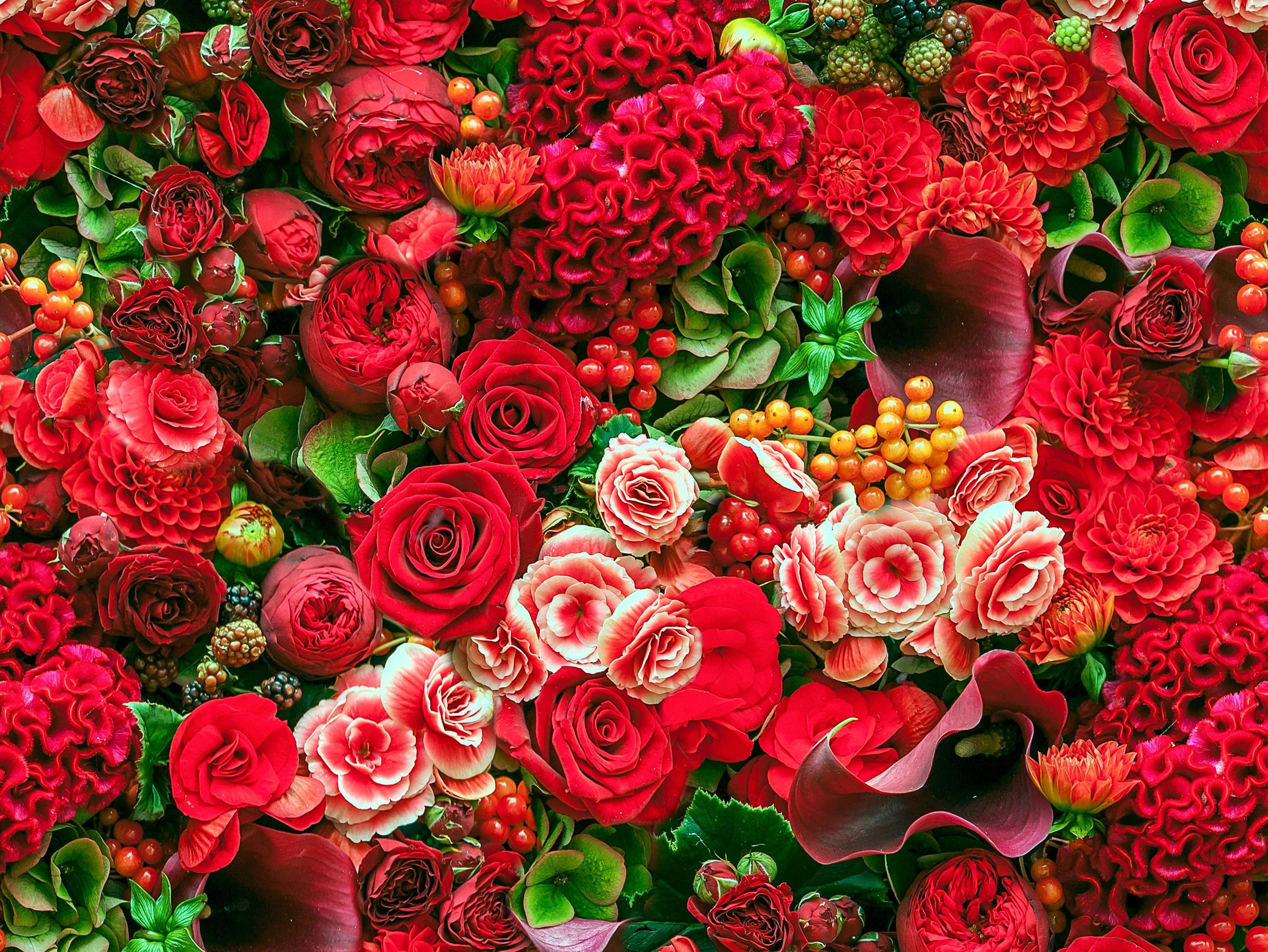 уют сборник картинок по цветами очень живописное