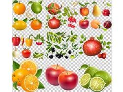 Клипарт овощи фотошоп