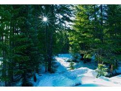 Картинки зима на рабочий стол