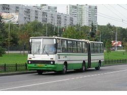 Автобус картинки