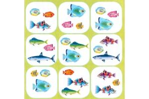 Рыбки картинки для детей цветные
