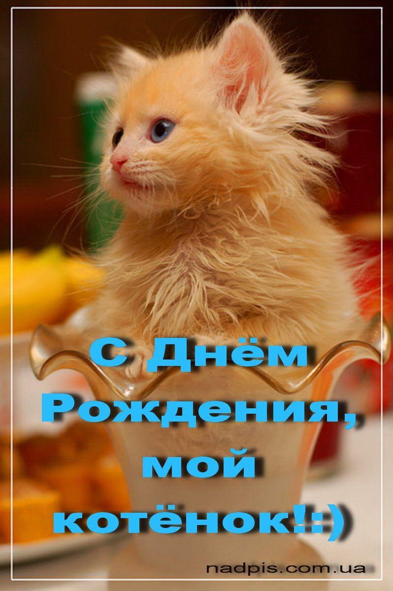 Прикольные открытки для любимого фото