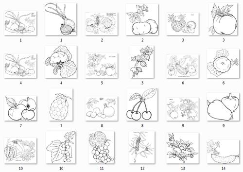 Овощи и фрукты в картинках для детей » Скачать лучшие ...