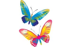 Красивые бабочки картинки для печати