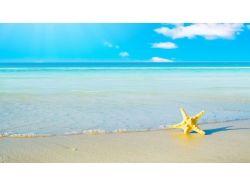 Лето фотографии море пляж
