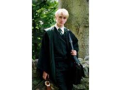 Гарри поттер драко малфой любовь фото 7
