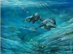 Крисивые заставки на рабочий стол подводный мир