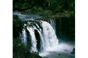 Нил река фото