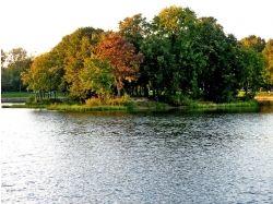Осень картинки для телефона 1