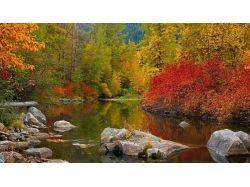 Осень картинки для телефона 6