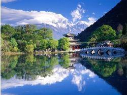 Картинки цветы китая