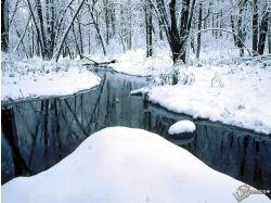 Фото зима лес пруд бесплатно 7