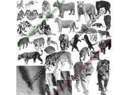 Кисти тигры фотошопа 3