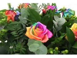 Фото цветы красочные