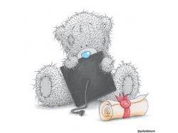 Тедди любовь картинки скачать 3