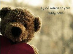 Тедди любовь картинки скачать 5