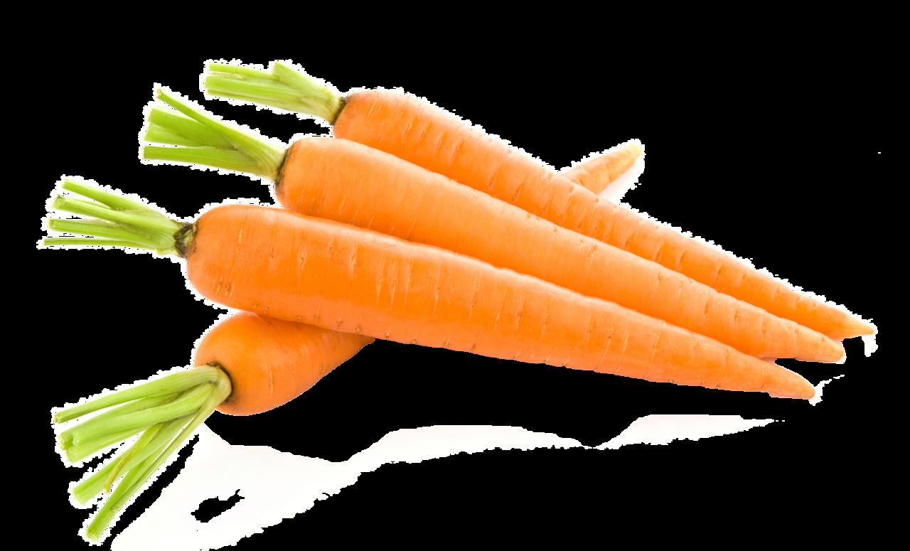 Картинки моркови, учителях