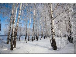 Фото зима пейзаж высокого разрешения 2