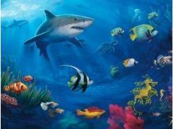 Онлайн обои подводный мир 4