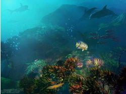 Бои подводный мир с рыбками 7