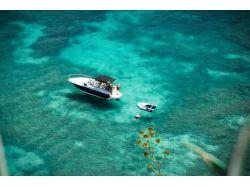Остров маврикий подводный мир 2