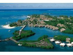 Остров маврикий подводный мир 6