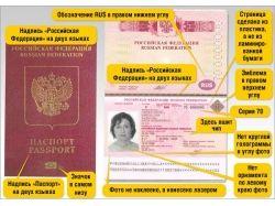 Заявление  на загранпаспорт фото 5