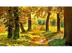 Осень фото hd
