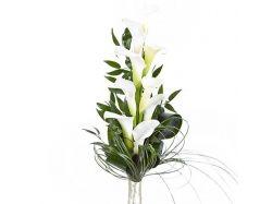 Посмотреть фото цветы калл 3