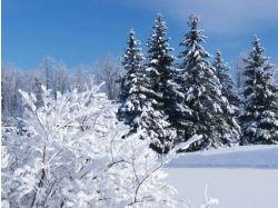 Картинки фото зима