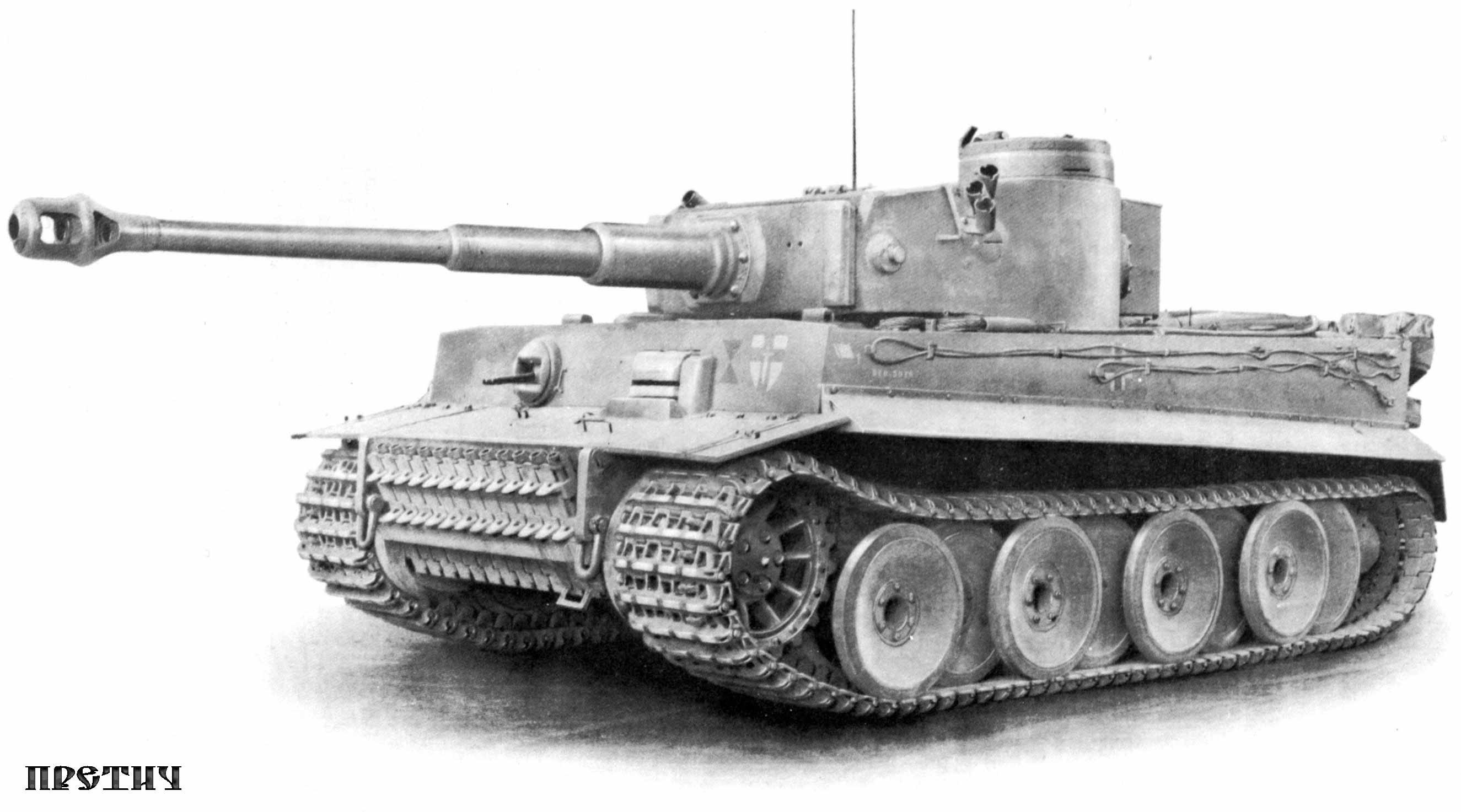 43 лучших фото, тигр, фотографии с танком