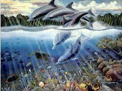 Конкурс донецк подводный мир