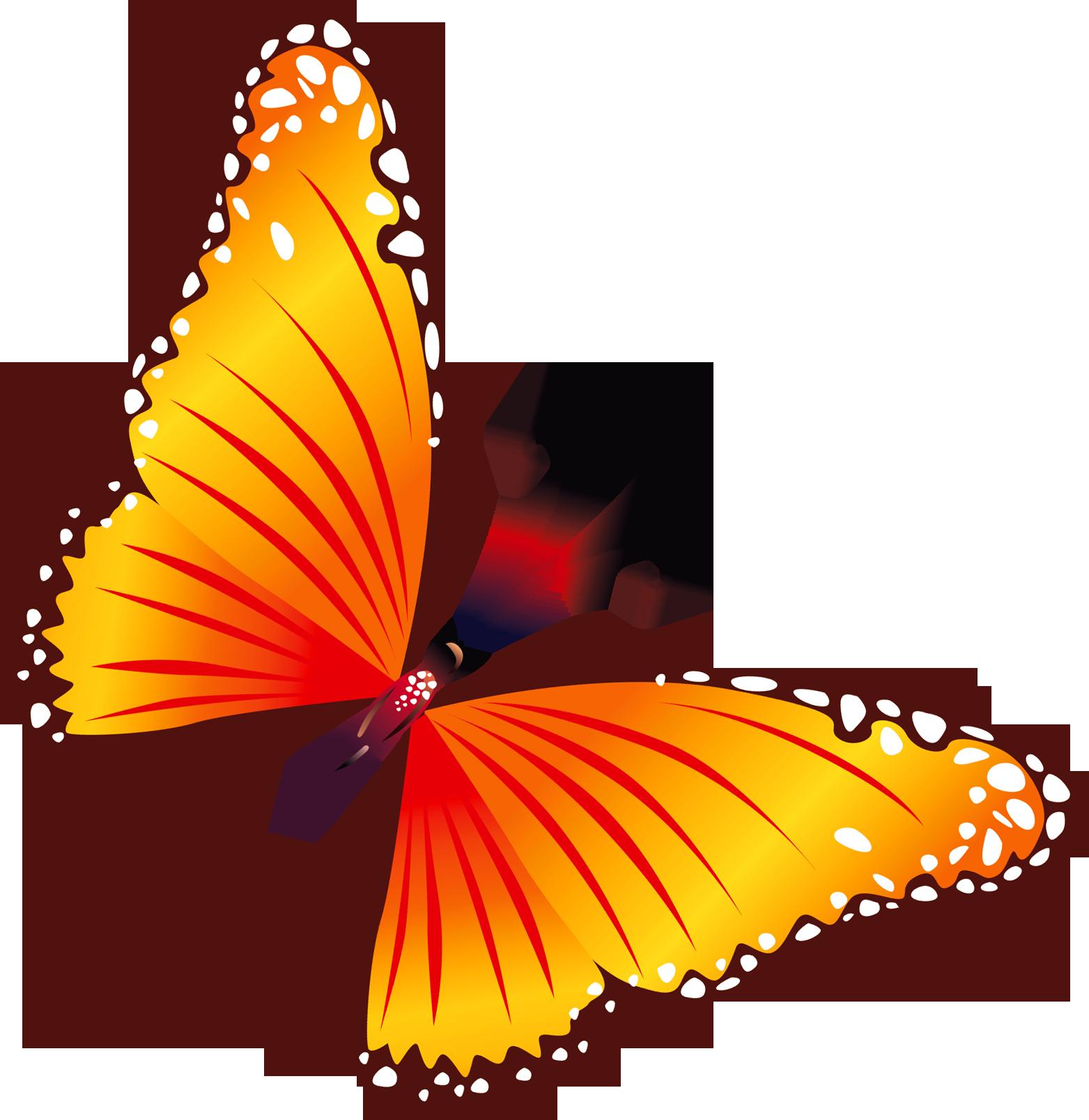 Картинки бабочки для детей на прозрачном фоне, мужу